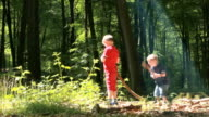 Children in woods with shafts of light video