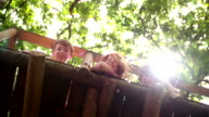 Children looking over side of treehouse with lush green leaves video