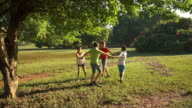 Children playing ring around rosie, young people, fun, park video