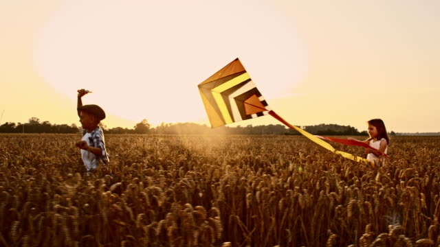 SLO MO Children playing with kite in wheat field video