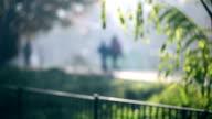 Children run in the sun, defocused video video