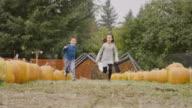 Children running through pumpkin patch celebrating autumn video