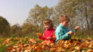 Children sit in autumn leaves on meadow video
