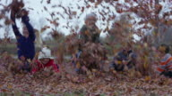 Children Throwing Leaves on a Fall Day video