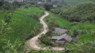 Children walking through the rice terraces valley in Sapa maui Chau Vietnam video
