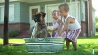 Children washing dog video
