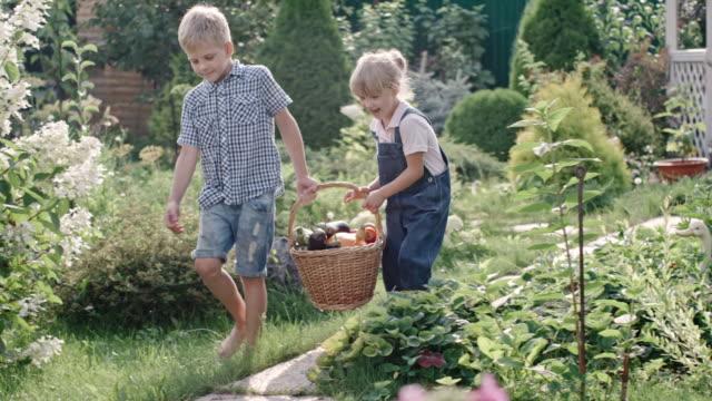 Children with Basket Full of Harvest video
