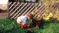Children with bunny pups (vintage 8mm film) video