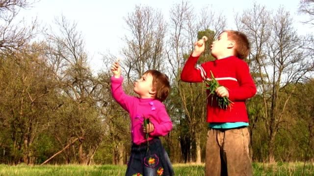 children with dandelion video