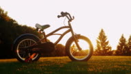 Children's bicycle on green grass at sunset. Concept - nostalgia, childhood, dreams video