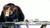Chimp Money Desk video