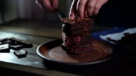 Chocolate cake pieces. Man hand put piece of chocolate cake on plate video