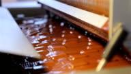 Chocolate Factory video