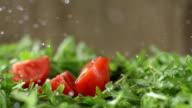 SLO MO Chopped Tomato Falls On Arugula video
