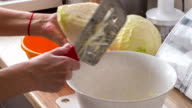 chopping of cabbage video