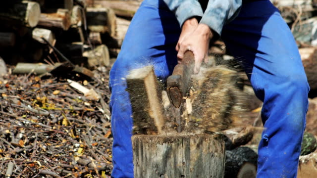 Chopping Wood Slow Motion video