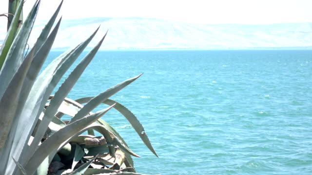 Choppy Water of Sea of Galilee in Front of Golan Heights video