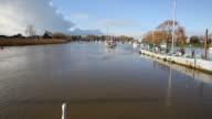 Christchurch Dorset England UK River Stour swan swimming away video