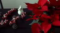 Christmas decoration and large red poinsettia on the table side view video