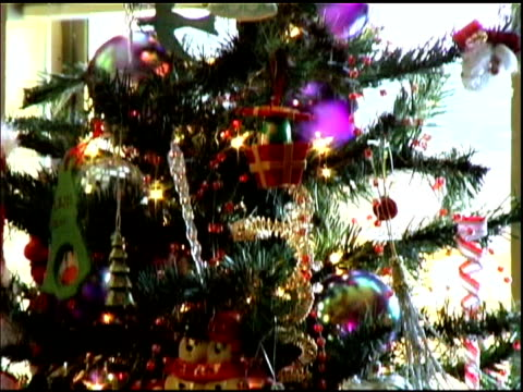Christmas Holiday Ornaments on Tree video