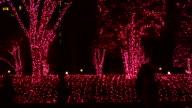 Christmas Illumination video