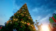 christmas tree at sunset video