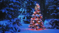 Christmas tree glowing in forest video