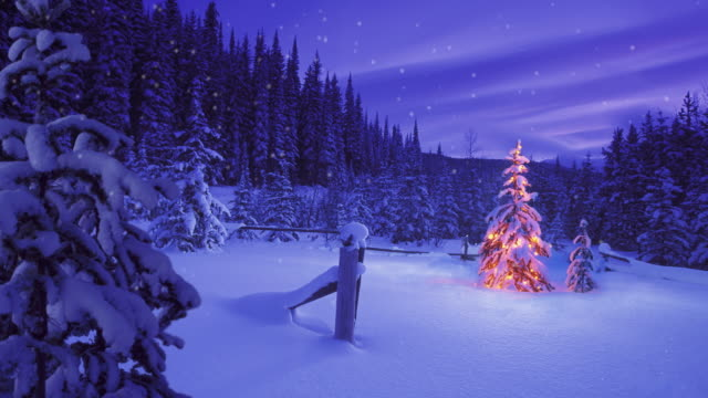 Christmas tree glowing outdoors under a snowy sky video