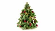 Christmas Tree; HD VIDEO SHOT video