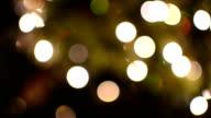Christmas Tree Lights Dolly video