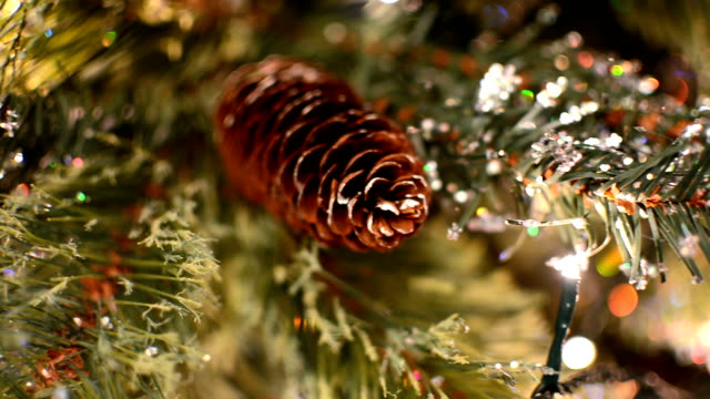 Christmas Tree Lights - Pine Cone video