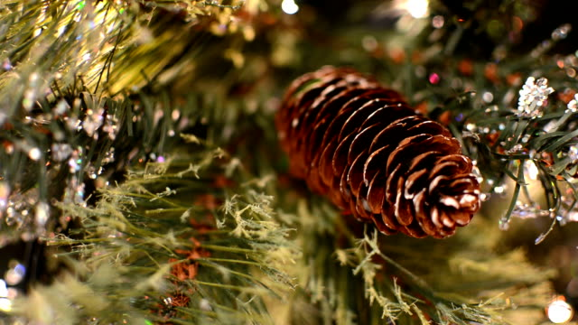 Christmas Tree Lights to Pine Cone video