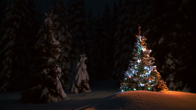 HD LOOP: Christmas Tree video