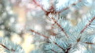 HD: Christmas Tree video