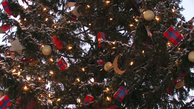 Christmas tree with snow video