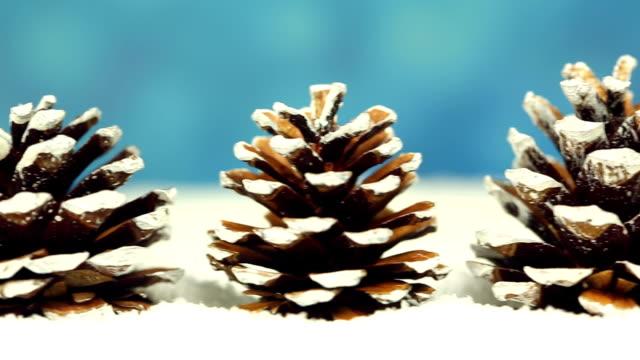 Christmas Trees, camera pan video