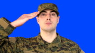 Chroma Key of Male Soldier Saluting video