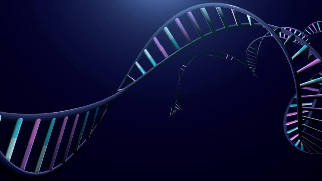 Chromosome and DNA strand. video