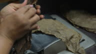 Cigar Production (Handmade) - 02 video