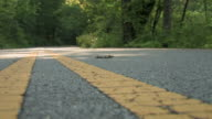 circle of life in the road video