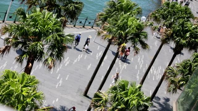 Circular Quay Tourists video