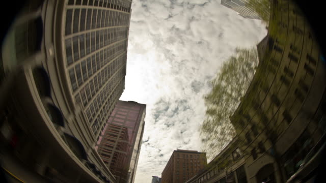 City Driving Vertical video