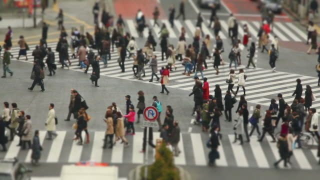 City Pedestrian Traffic Shibuya Tilt Shift video