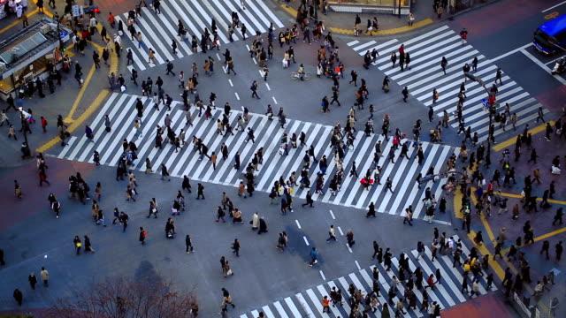 City Pedestrian Traffic Shibuya Tokyo video