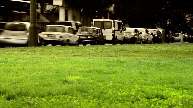 City traffic timelapse scene with green grass video