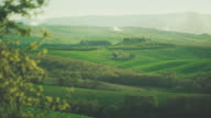 Classic Tuscan view: green hill and cascina video