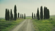Classic Tuscan view: green hill and cypresses video
