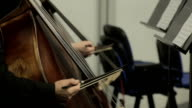 Classical Music Professional Cello Player video
