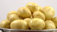 clean potatoes in a colander, closeup video