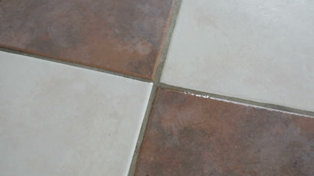 Cleaning Dirty Ceramic Mortar on the Floor with Products video